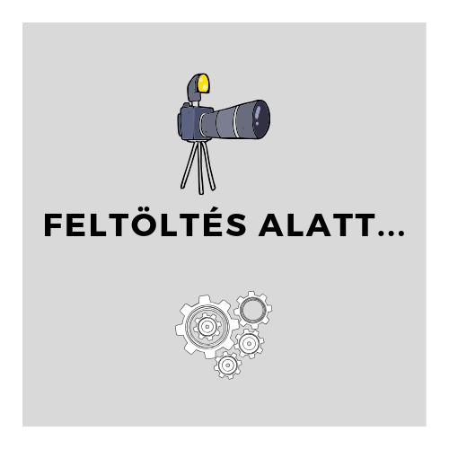 Igora Royal Absolutes hajfesték arany 60ml